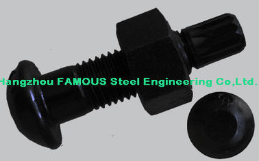 China Steel Buildings Kits Black Bolts And Fasteners With High Tension Hex Bolts factory