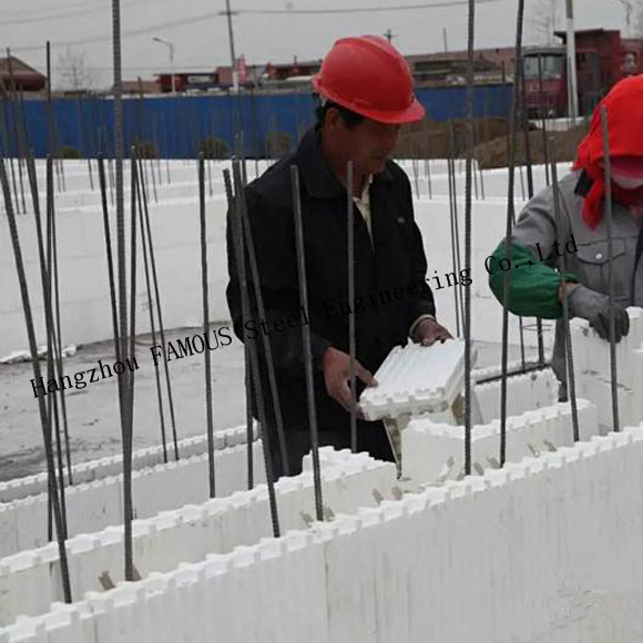 Green House Self Aligning Typical Assembly Insulated Concrete Forms ICFs Wall BuildBlocks 1